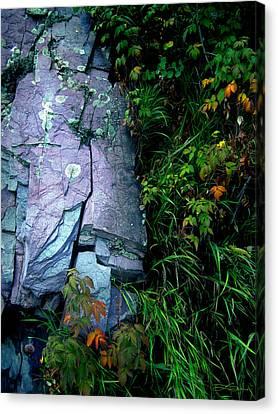 Blue Granite Canvas Print by Ric Soulen