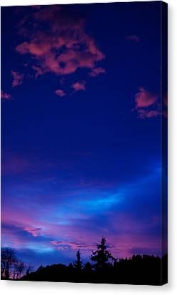 Blue Heaven  Canvas Print by Kevin Bone