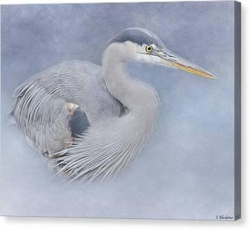 Blue Heron Art - Creativity Canvas Print by Jordan Blackstone