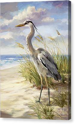 Sea Birds Canvas Print - Blue Heron  by Laurie Hein
