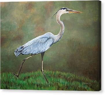 Blue Heron Canvas Print by Pam Kaur