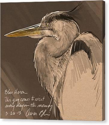 Blue Heron Sketch Canvas Print