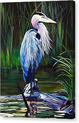 Blue Herron Canvas Print