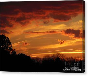 Blue Horse Sunset Canvas Print by Rabiah Seminole