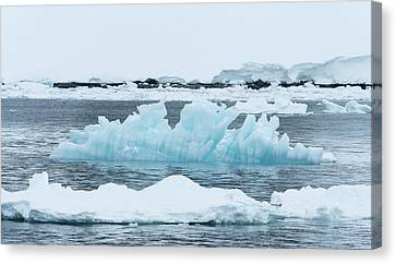 Blue Ice Floats In Neumayer Channel Canvas Print by Jeff Mauritzen