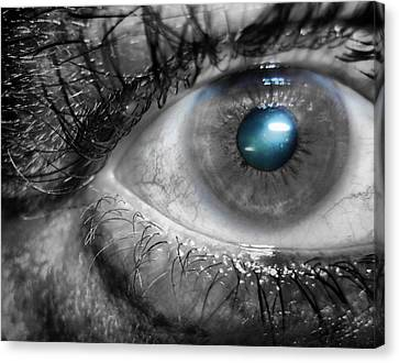 Blue Iris Canvas Print by Beto Machado