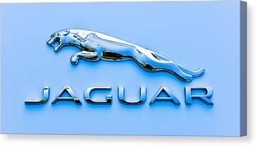 Blue Jaguar Canvas Print by Ronda Broatch
