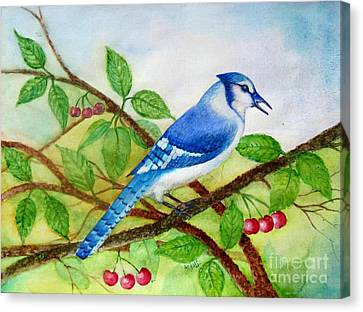 Blue Jay Canvas Print by Anjali Vaidya