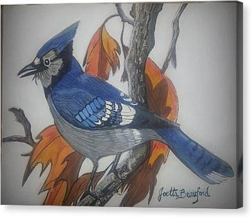 Blue Jay At Fall Canvas Print by Joetta Beauford
