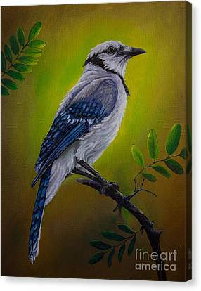 Blue Jay Painting Canvas Print by Zina Stromberg