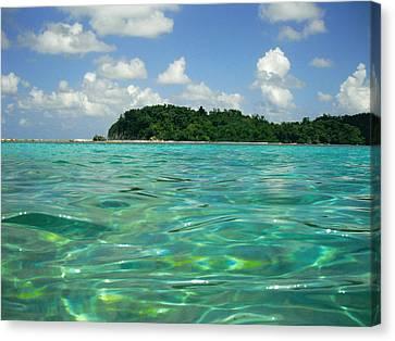 Blue Lagoon Canvas Print by Carey Chen
