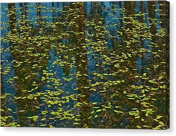 Canvas Print featuring the photograph Blue Lake Reflections by Sherri Meyer