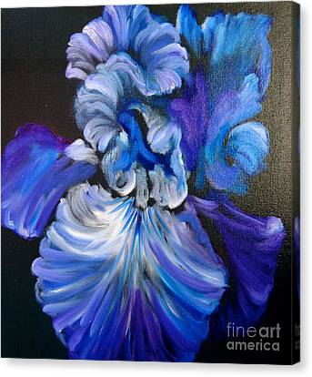 Blue/lavender Iris Canvas Print by Jenny Lee