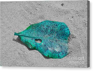 Blue Leaf Canvas Print by Michelle Meenawong