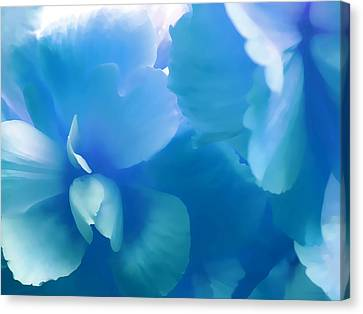 Blue Begonia Canvas Print - Blue Melody Begonia Floral by Jennie Marie Schell