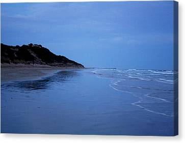 Blue Mood Canvas Print by Amanda Holmes Tzafrir