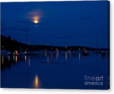 Blue Moon Canvas Print by Chuck Flewelling