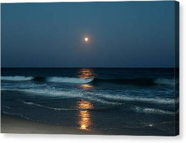 Canvas Print featuring the photograph Blue Moon by Cynthia Guinn