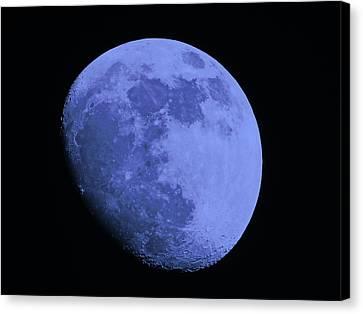 Blue Moon Canvas Print by Tom Gari Gallery-Three-Photography