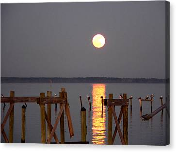 Blue Moon On The Bay On New Years Eve 2009 Canvas Print