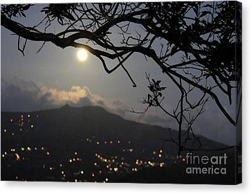 Blue Moon Over El Yunque Canvas Print