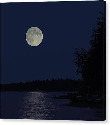 Blue Moon Canvas Print by Randy Hall