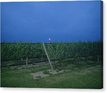 Blue Moon Canvas Print by Robert Nickologianis