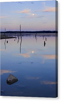 Blue Moon Canvas Print by Scott Bean