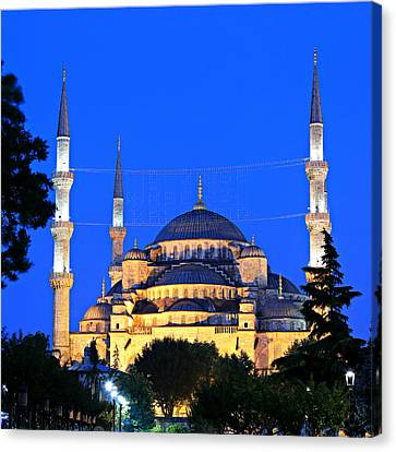 Blue Mosque At Dawn Canvas Print by Stephen Stookey