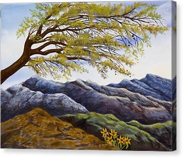 Blue Mountains Canvas Print by Susan Culver