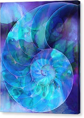Seashell Canvas Print - Blue Nautilus Shell By Sharon Cummings by Sharon Cummings