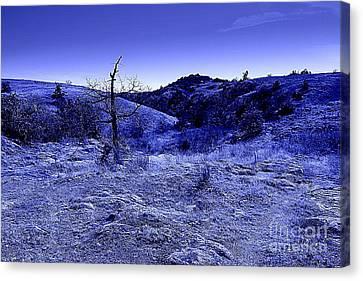 Blue Night Canvas Print by Mickey Harkins