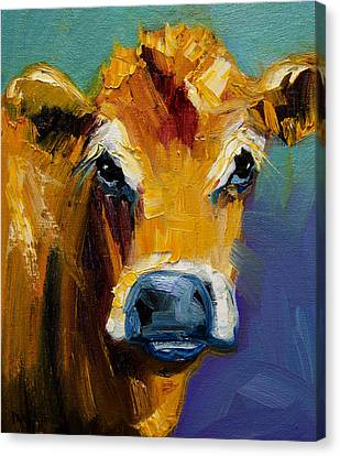Blue Nose Cow Canvas Print