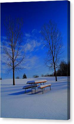 Blue On A Snowy Day Canvas Print by Dan Sproul