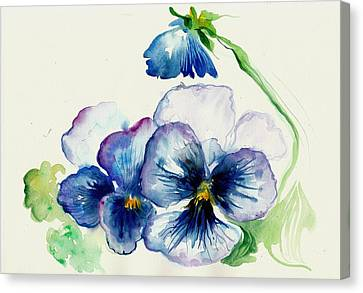 Blau Canvas Print - Blue Pansies Watercolor by Tiberiu Soos