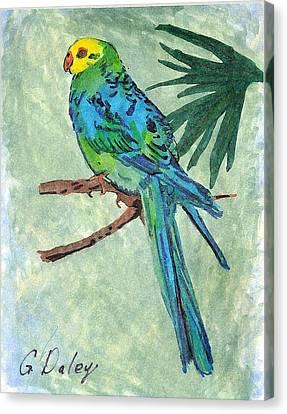 Blue Parakeet Canvas Print by Gail Daley