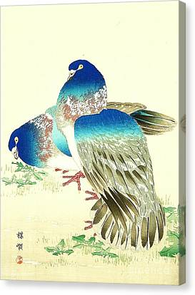 Blue Pigeons Canvas Print by Pg Reproductions