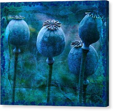 Canvas Print featuring the photograph Blue Poppy Grunge by Sandra Foster