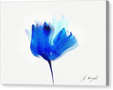 Blue Poppy Silouette Mixed Media  Canvas Print
