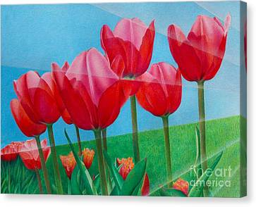 Blue Ray Tulips Canvas Print by Pamela Clements