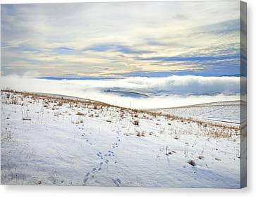 Blue Remembered Hills Canvas Print