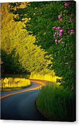 Canvas Print featuring the photograph Blue Ridge Afternoon by John Haldane