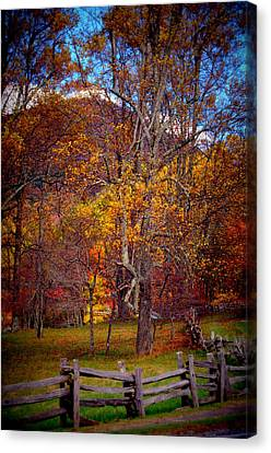 Blue Ridge Fenced In Fall Canvas Print by Cathy Shiflett
