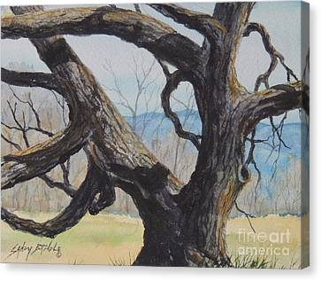 Blue Ridge Memories...sold Canvas Print