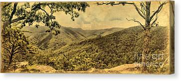 Blue Ridge Mountains Canvas Print by Nigel Fletcher-Jones