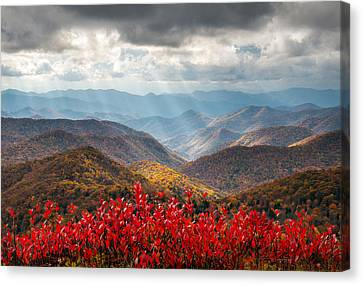 Dave Allen Canvas Print - Blue Ridge Parkway Fall Foliage - The Light by Dave Allen