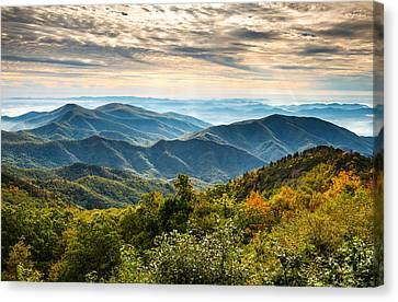 Blue Ridge Parkway Sunrise - Light Lines And Leaves Canvas Print by Dave Allen