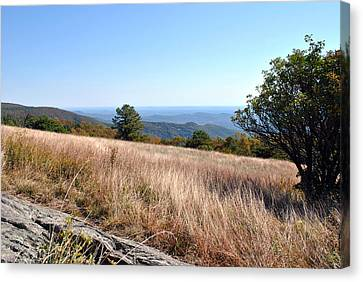 Canvas Print featuring the photograph Blue Ridge View by Kelly Nowak