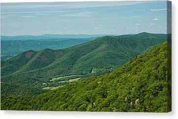 Blue Ridge Vista Canvas Print by Lara Ellis