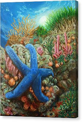 Blue Seastar Canvas Print